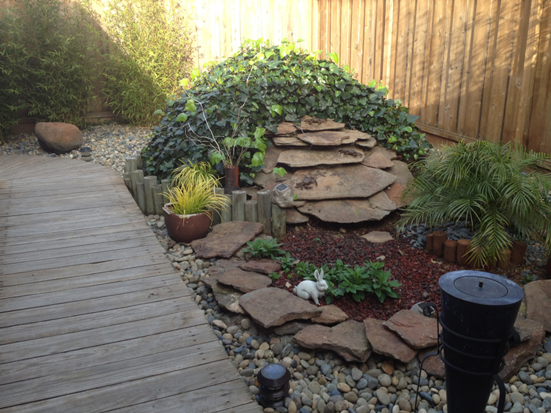 Bay Area Pet Pals side yard
